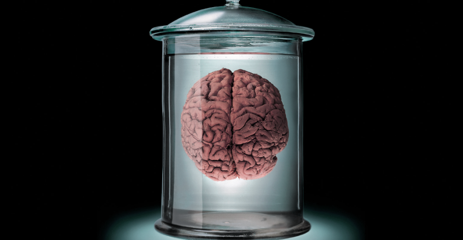 How Not To Shrink Your Brain