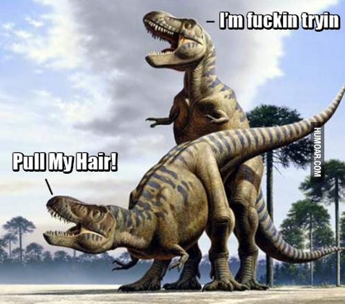 t-rex-pull-my-hair